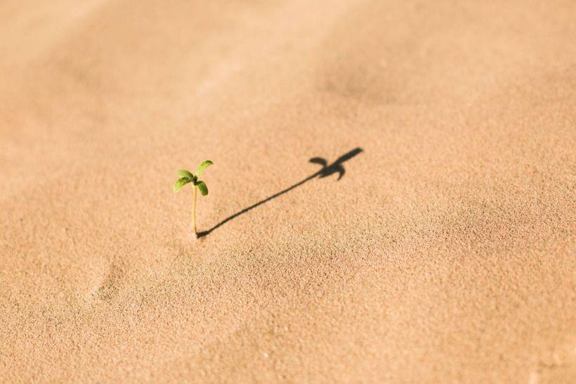 Tri načina na koji prihvatanje pomaže da radite sa teškim osećanjima